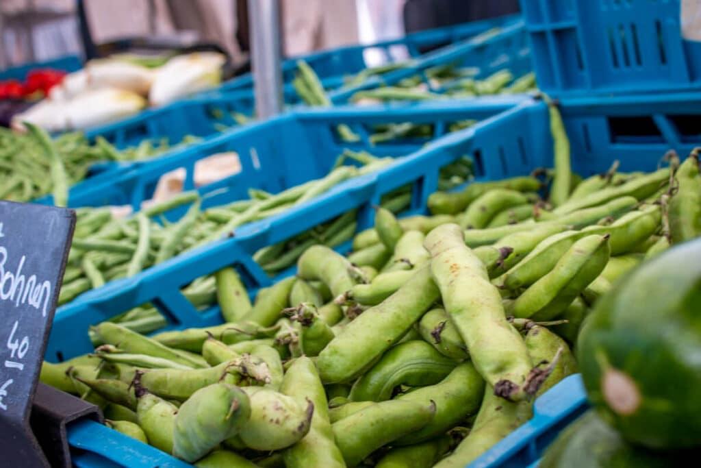 Marktstand Gärtnerei Baum Langenfelder Wochenmarkt Bild 2