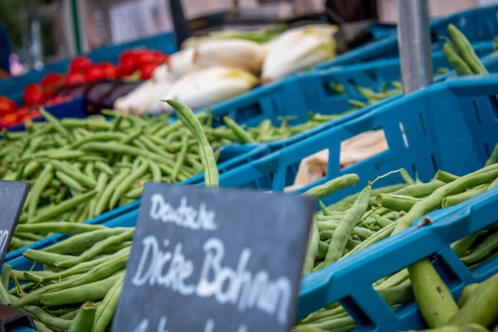 Marktstand Gärtnerei Baum Langenfelder Wochenmarkt Bild4