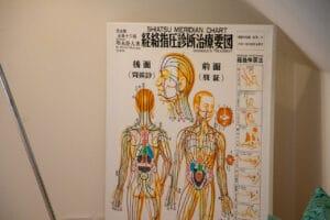 Freiraum für Dich Langenfeld - Bild Anatomie