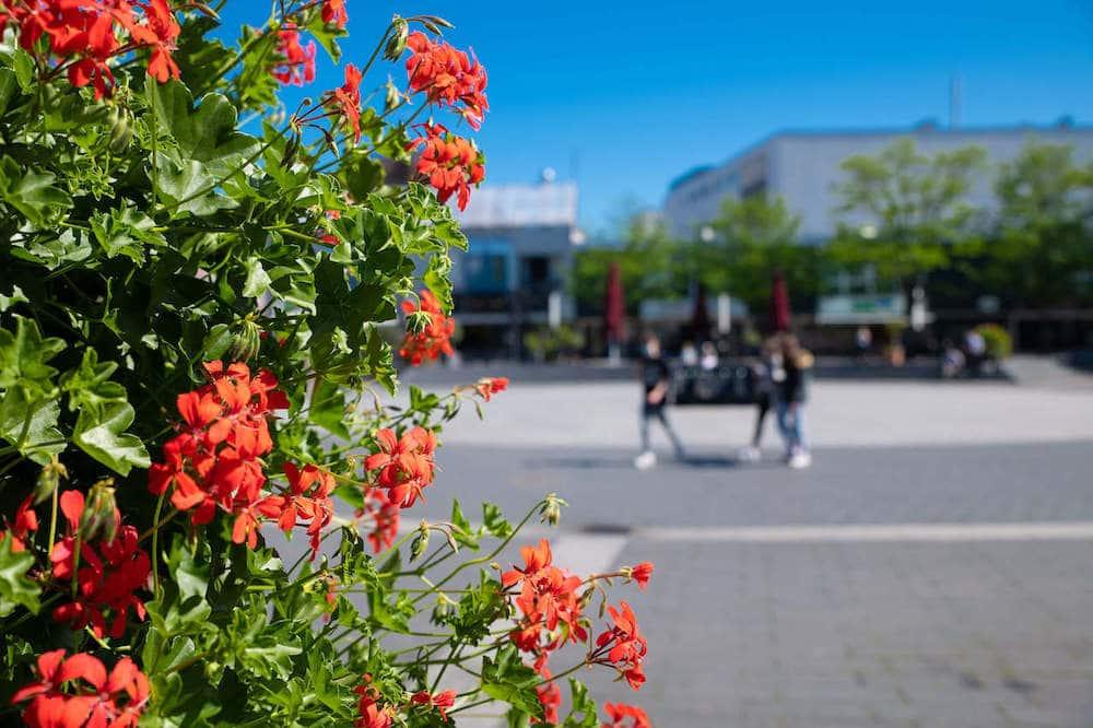 ShoppingMitte Langenfeld Blumen in der Stadt 1