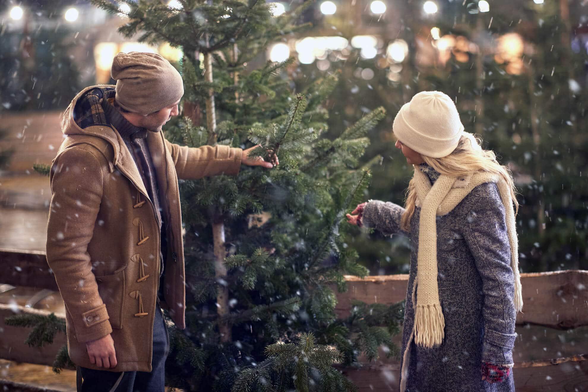 Langenfeld Weihnachtsbaum kaufen Übersicht Tannenbaum